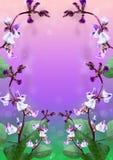 Belles fleurs sur un fond pourpre. photos stock