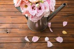 Belles fleurs tendres dans la boîte d'arrosage et des pétales roses sur la surface en bois Images libres de droits