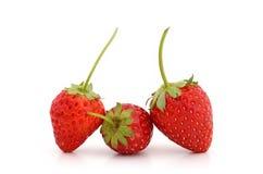 Belles fraises et feuilles d'isolement sur le bacground blanc Image stock