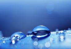 Belles grandes baisses de rosée de l'eau sur une fin bleue de plume  image libre de droits