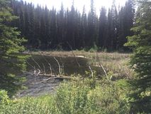Belles hausse et vue scéniques d'un lac Image stock