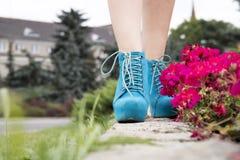 Belles jambes avec la nature Photographie stock libre de droits