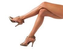 Belles jambes de femmes photos libres de droits