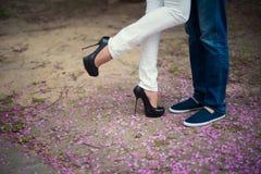 Belles jambes de jeune fille dans des talons hauts à côté de l'homme de jambes dans des pétales roses de fleur, style, mode, conc Image stock
