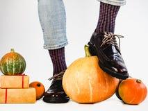Belles jambes du ` s de potirons et d'hommes dans des chaussures élégantes photographie stock libre de droits