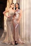 Belles jeunes femmes avec les cheveux foncés dans le dresse luxueux de soirée Photo stock
