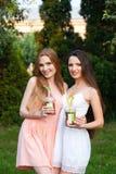Belles jeunes filles dans des robes buvant du jus dans le jardin Photo stock