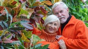 Belles ménages mariés par personnes âgées heureuses Photo stock
