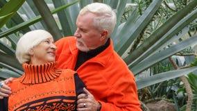 Belles ménages mariés par personnes âgées heureuses Photographie stock libre de droits