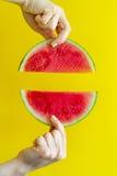 Belles mains féminines tenant le wate appétissant rouge savoureux frais Photo libre de droits
