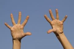 Belles mains femelles Photos libres de droits