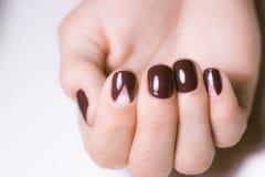 Belles mains femelles avec la manucure lumineuse Clous couverts de clou Photographie stock libre de droits