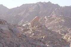 Belles montagnes en Egypte photographie stock libre de droits