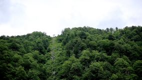 Belles montagnes, forêts et funiculaires se levant jusqu'au dessus nature clips vidéos