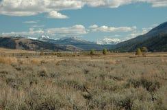 Belles montagnes neigeuses dans le haut pays Photo libre de droits
