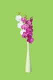 Belles orchidées Images libres de droits