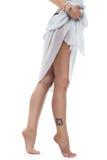 Belles pattes avec le tatouage Photo libre de droits