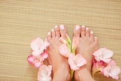 Belles pattes de femme Photo stock
