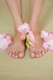 Belles pattes de femme Photo verticale Photographie stock libre de droits