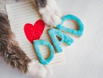 Belles pattes du ` s de chat, carte de voeux avec le coeur peint et rouge Photos libres de droits