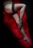 Belles pattes minces dans les nylons nets Photos stock