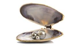 Belles perles dans un seashell photographie stock