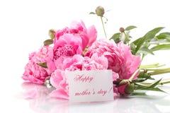 Belles pivoines de floraison Photo libre de droits