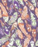 Belles plumes Photo libre de droits