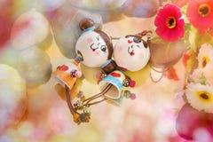 Belles poupées de couples dans le concept d'amour Images stock