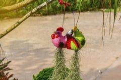 Belles poupées de poulet accrochant l'arbre décoratif Image libre de droits