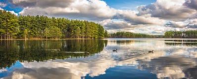 Belles réflexions de lac Photo libre de droits