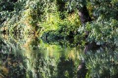 Belles réflexions sur le canal de Chichester dans le Sussex occidental, Angleterre photographie stock