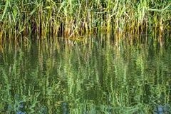 Belles réflexions sur le canal de Chichester dans le Sussex occidental, Angleterre photos stock
