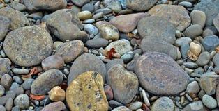 Belles roches de rivière sur la terre Image stock