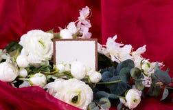 Belles roses Photos libres de droits