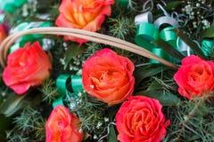 Belles roses dans le concept des vacances Proue d'étoile bleue avec la bande bleue (enveloppe de cadeau) sur le fond blanc images stock