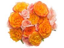 belles roses de fond blanches Photo stock