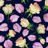 Belles roses et feuilles jaunes et rouges de pourpre sur le fond bleu-foncé Configuration florale sans joint Peinture d'aquarelle Images libres de droits