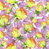Belles roses et feuilles jaunes et rouges sur le fond blanc Configuration florale sans joint Peinture d'aquarelle Photo libre de droits