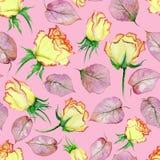 Belles roses et feuilles jaunes et rouges sur le fond rose Configuration florale sans joint Peinture d'aquarelle Images stock