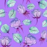 Belles roses et feuilles lumineuses sur le fond lilas vif Configuration florale sans joint Peinture d'aquarelle Images stock