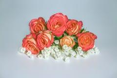 Belles roses et fleurs blanches Photographie stock