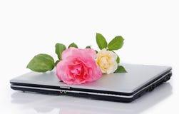 Belles roses et ordinateur portatif mis ensemble d'isolement Image libre de droits