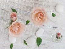 Belles roses fraîches Photographie stock libre de droits