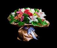 Belles roses rouges et blanches Photos libres de droits