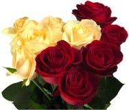 Belles roses rouges et jaunes Image libre de droits