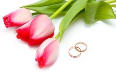 Belles tulipes de source et boucles de mariage Photos libres de droits