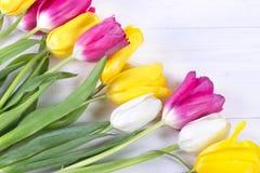 Belles tulipes sur le fond en bois Photographie stock libre de droits