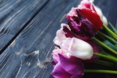 Belles tulipes violettes roses colorées sur la table en bois grise Valentines, fond de ressort moquerie florale avec le copyspace photo libre de droits