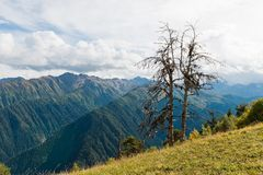 Belles vues des montagnes Mestia georgia Photos libres de droits